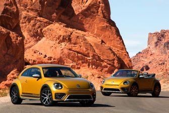 Beetle Dune-4