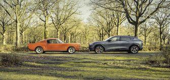 Mustangs side